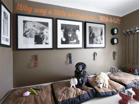 hgtv ideas magazine mudroom for dogs hgtv