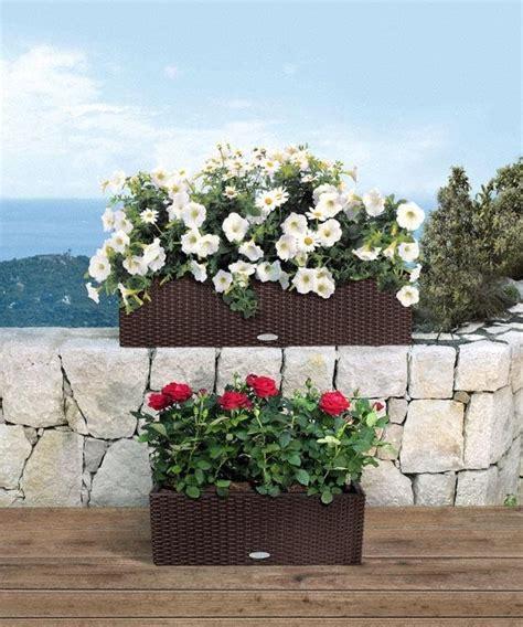 lechuza vasi vendita vasi pescara valpescara garden