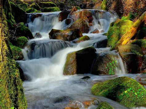 Waterfall Water Rocks Moss Beautiful Hd Wallpaper ...