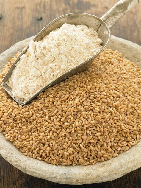 wheat flour organic methow hard red wheat flour bluebird grain farms