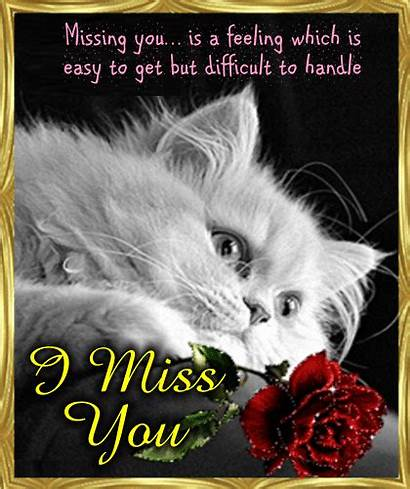 Ecard Missing Miss Cards Greeting Card Ecards