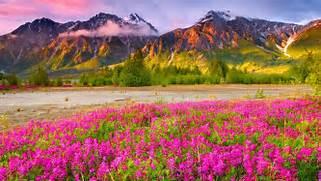 Download beautiful sce...Beautiful Nature Scenery Wallpapers