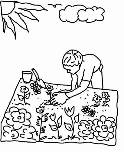 Coloring Garden Pages Planting Flower Seed Gardening