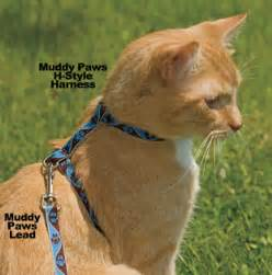 simply cat harness lupine patterned collar harness and lead