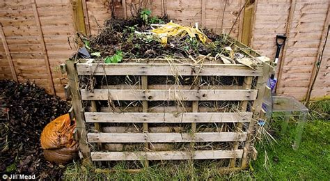 Lifestyle Special: Compost bay, raised beds & Sweet Peas