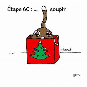 Comment Emballer Un Cadeau : comment emballer un cadeau quand vous avez un chat 8 images ipnoze ~ Maxctalentgroup.com Avis de Voitures