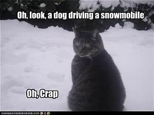 Snowmobile Quot... Funny Polaris Quotes