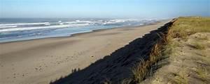 Dunes Et Marais : dunes et marais d 39 hourtin reserves naturelles de france ~ Maxctalentgroup.com Avis de Voitures