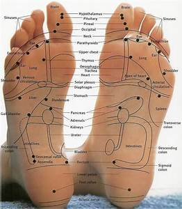 Vast Reservoir Of Useless Knowledge  Reflexology Poop Massage