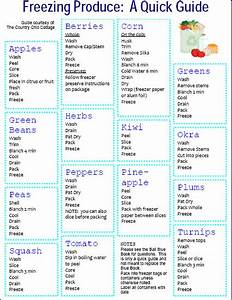 Freezing Produce Chart Whattopin Us  Topic  Diyprojects   I