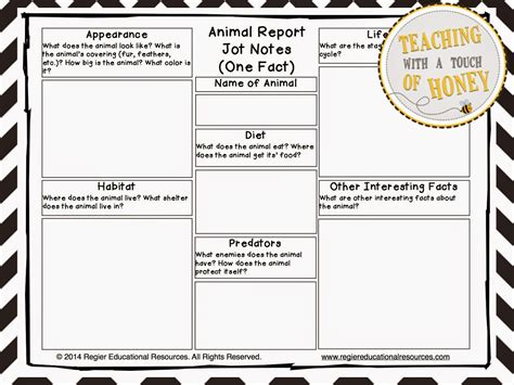 teacher entrepreneurs iii writing lesson