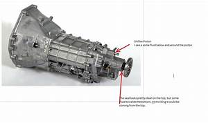Transmission Leak Rear - The Mustang Source