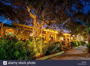 Fifth avenue naples florida usa night evening lights