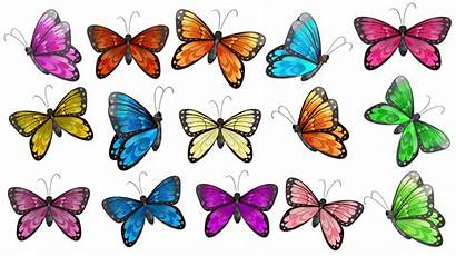 Butterflies Colourful Vector Clip Butterfly Clipart Background