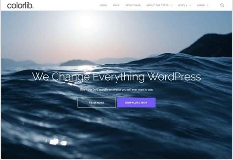 Shapely Theme 22 Free Responsive Themes That Look Amazing Wp