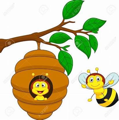 Bee Hive Cartoon Honey Clipart Clip Comb