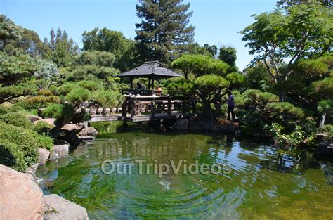 japanese gardens hayward ca usa pictures ourtripvideos