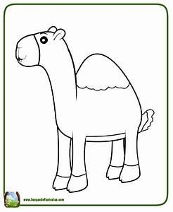 99 DIBUJOS DE CAMELLOS ® Camellos para colorear infantiles