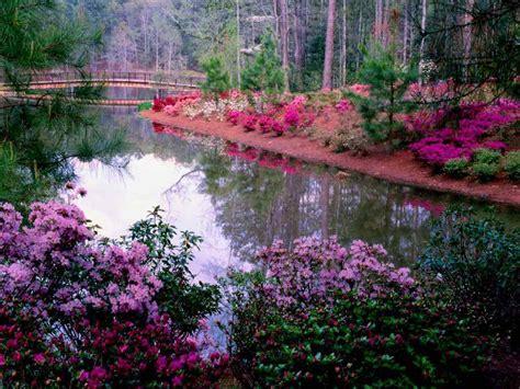 48) Jardin Fleuri