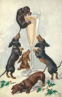 happy new years postcard deorge doxies dachshund parade vintage vintage happy