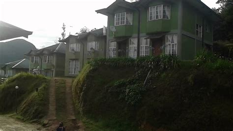 bungalow christmas house sanasa bungalows nuwaraeliya