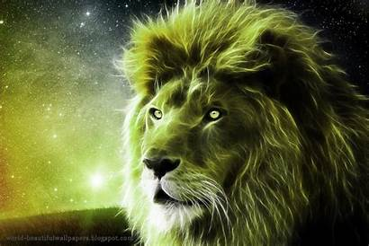 Lion Wallpapers Ruth Heritage Beautifulwallpapers
