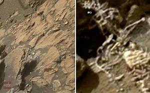 WIRED: Final Proof ALIENS Life Existed on Mars