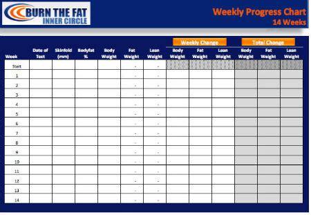 burn  fat  day progress chart