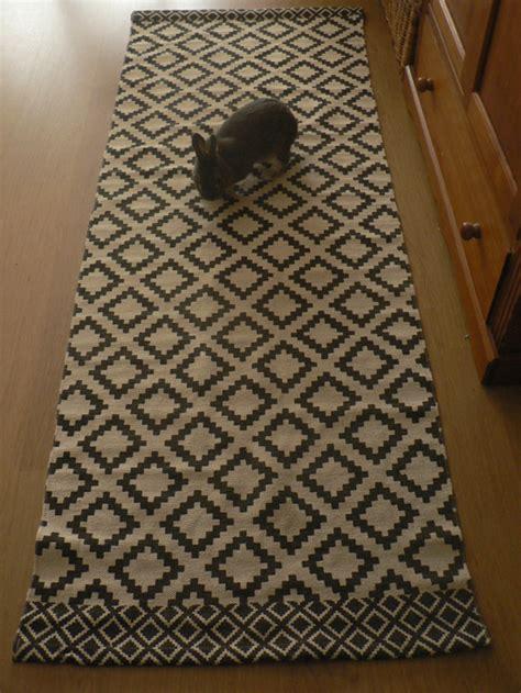 a quoi sert le tapis de course la dure vie du lapin urbain nouveau tapis de course