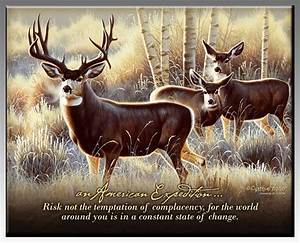 Wildlife Inspir... Elk Animal Quotes