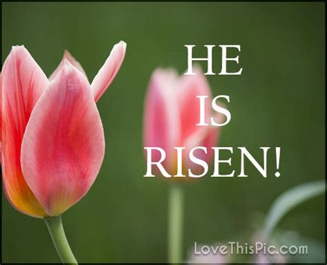 He Is Risen Images He Is Risen Pictures Photos And Images For