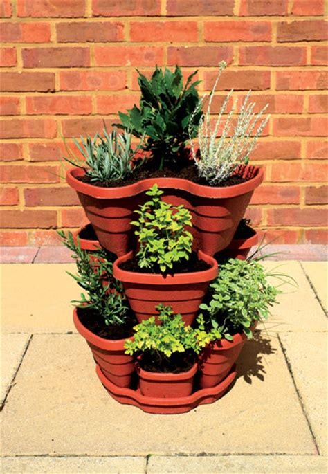 pots 224 fraises et herbes 29 99