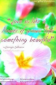BLOOMING LOVE Q... Blooming Relationship Quotes