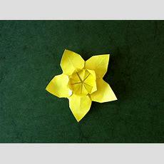 Sakura Star (ali Bahmani) Daffodil Shaping  Happy Folding