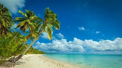 Landscape Trees Palm Tropical Sea Nature Island