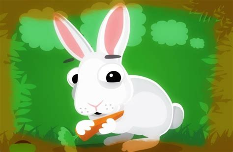 imagenes de animales en caricatura conejo frases