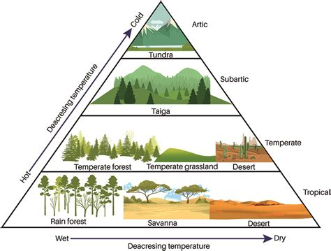 ecology physical sciences reviews