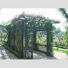 Rose Gardens  The Rose Journal