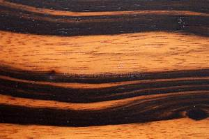 Legno Dell U0026 39 Ebano Di Macassar Fotografia Stock