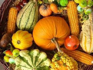 Schöne Herbstbilder Kostenlos : es ist herbst freude auf eine sch ne jahreszeit ~ A.2002-acura-tl-radio.info Haus und Dekorationen