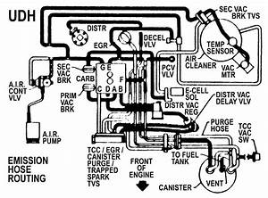 I Need A Vacuum Line Shematic For An 85 S10 2 8
