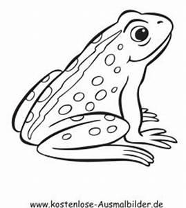 Bastelvorlagen Tiere Zum Ausdrucken : ausmalbilder frosch ausmalbilder tiere wintertiere pinterest ~ Frokenaadalensverden.com Haus und Dekorationen