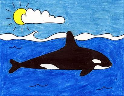 Whale Killer Draw Humpback Projects Crayon Artprojectsforkids