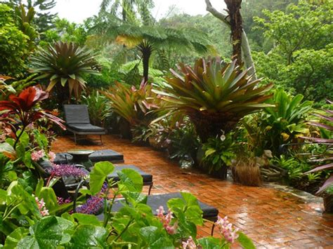 tropical style gardens various garden designs for minimalist home