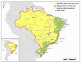 João Pessoa – Paraíba Paradise » Yellow Fever