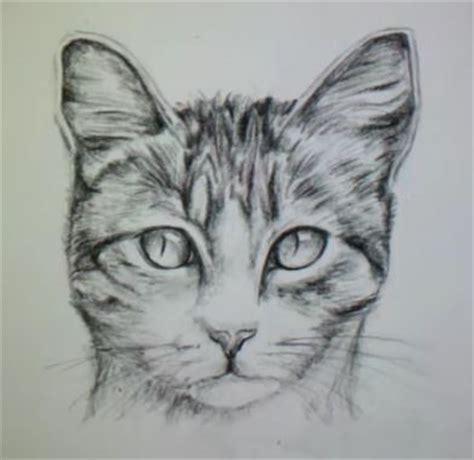 Unencrypted, claims to have proximity chat. dessin de chat facile realiste - Les dessins et coloriage
