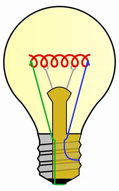 Bulb Labels Incandescent Parts Lightbulb Clipart Svg