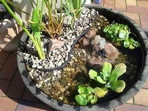 Kleiner Teich Im Garten : kleiner teich garten pinterest kleine teiche teiche und mini teich ~ Markanthonyermac.com Haus und Dekorationen