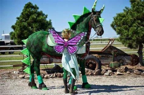 kreative halloween kostueme fuer pferd und reiter feendrache