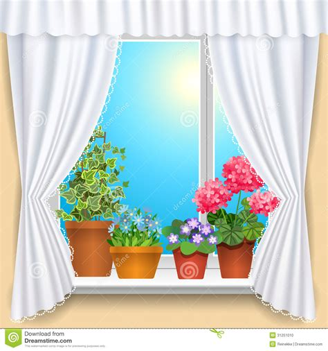 flowers on window stock photo image 31251010
